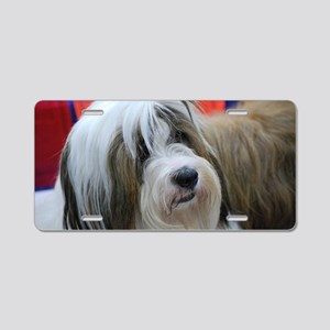 Tibetan Terrier Aluminum License Plate