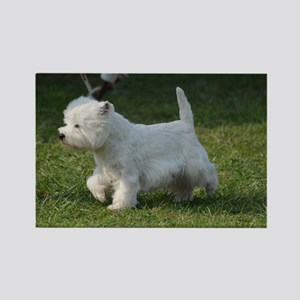 Cute West Highland White Terrier Rectangle Magnet