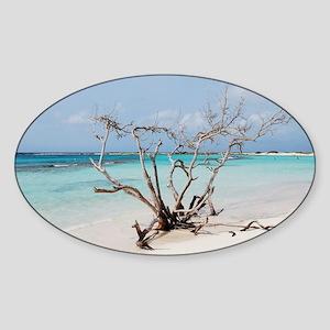 Baby Beach in Aruba Sticker (Oval)
