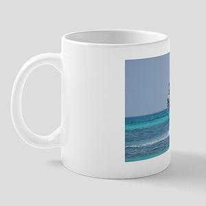 Power Kiting Mug