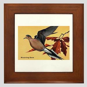 Mourning Dove Bird Framed Tile