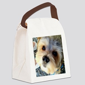 Morkie Love Canvas Lunch Bag