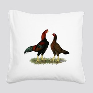 Aseel Black Red Chickens Square Canvas Pillow