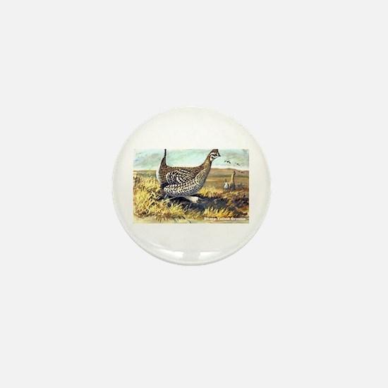 Sharp-Tailed Grouse Bird Mini Button