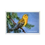 Prothonotary Warbler Bird Rectangle Magnet