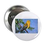 Prothonotary Warbler Bird Button