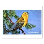 Prothonotary Warbler Bird Small Poster