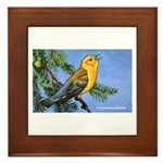 Prothonotary Warbler Bird Framed Tile