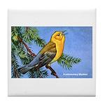 Prothonotary Warbler Bird Tile Coaster