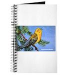 Prothonotary Warbler Bird Journal