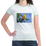 Prothonotary Warbler Bird Jr. Ringer T-Shirt