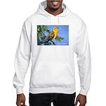 Prothonotary Warbler Bird Hooded Sweatshirt