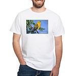Prothonotary Warbler Bird White T-Shirt
