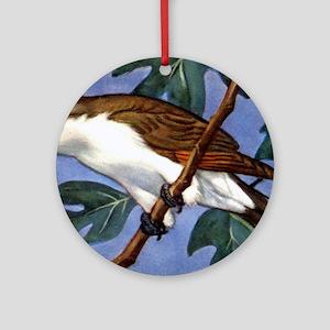 Yellow-Billed Cuckoo Bird Ornament (Round)