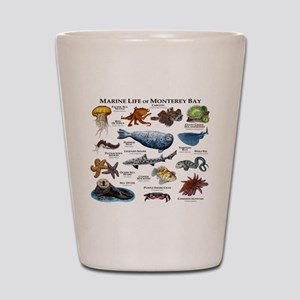 Marine Life of Monterey Bay Shot Glass