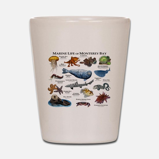 Marine Life of Monterey Bay Shot Glass