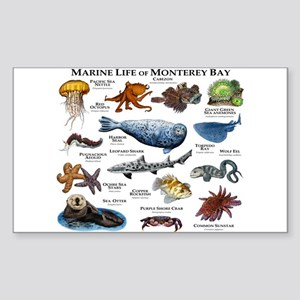 Marine Life of Monterey Bay Sticker (Rectangle)