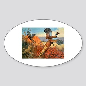 Pheasant Bird Oval Sticker