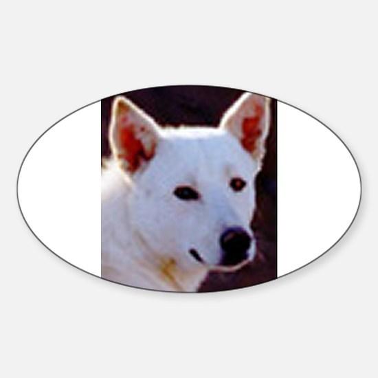 canaan dog Decal