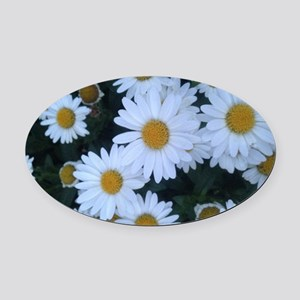 Darling Daisies Oval Car Magnet