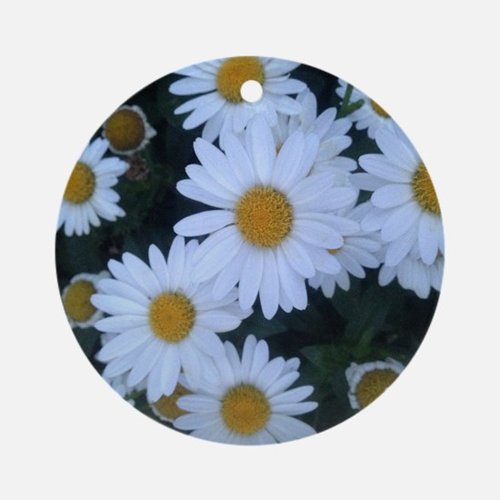 Darling Daisies Round Ornament