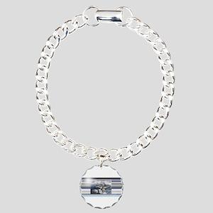 F14 Charm Bracelet, One Charm