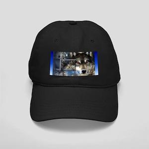 Wolf Black Cap