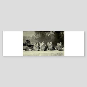 A Gang of Poachers Bumper Sticker