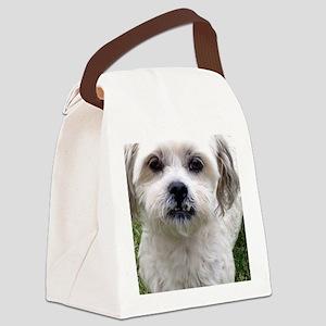TEDDY BEAR Canvas Lunch Bag