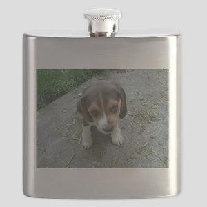 Cute Beagle Puppy Flask