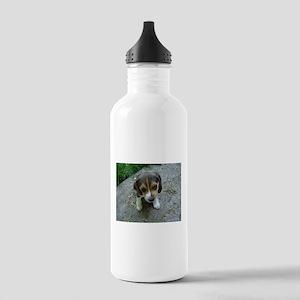 Cute Beagle Puppy Water Bottle