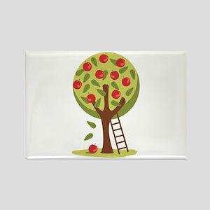 Apple Tree Magnets