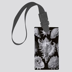 Haeckel Shell Sheet xxl Large Luggage Tag