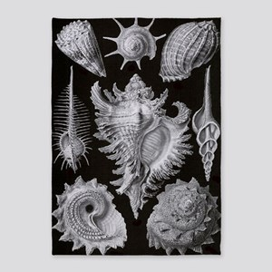 Haeckel Shell Sheet xxl 5'x7'Area Rug