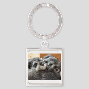Snoozing Schnauzer Puppies Keychains