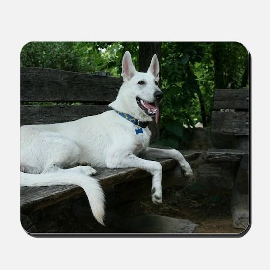 White Shepherd on a bench. Mousepad