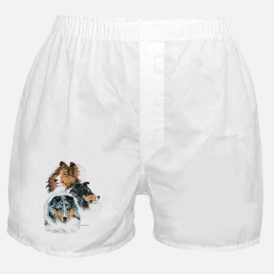 Sheltie Portraits Boxer Shorts