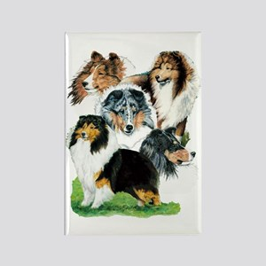 Sheltie Group Rectangle Magnet