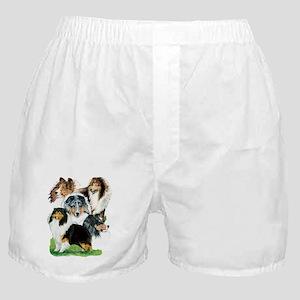 Sheltie Group Boxer Shorts