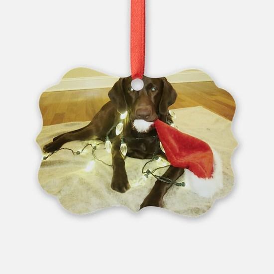 Chocolab Lab Christmas Ornament