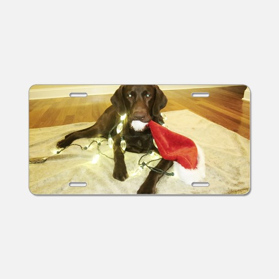 Chocolab Lab Christmas Aluminum License Plate