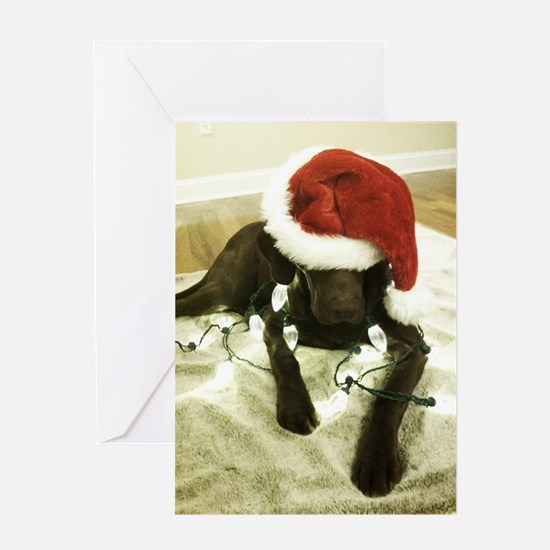 Chrocolate Lab Christmas 3 Greeting Card