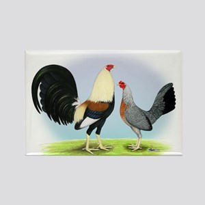 Grey Gamefowl Rectangle Magnet