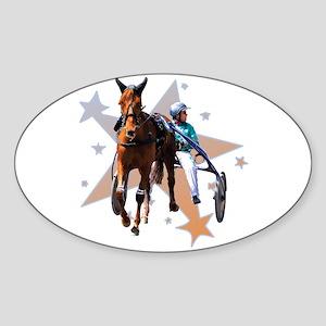Harness Star Oval Sticker