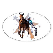 Harness Star Oval Sticker
