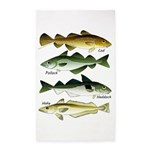 4 Cod fishes c 3'x5' Area Rug