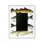 4 Cod fishes c Picture Frame