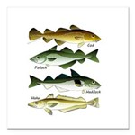 4 Cod fishes Square Car Magnet 3