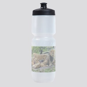 LION FAMILY Sports Bottle