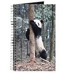 Panda Cub Journal